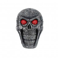 Googly Skull Plaque (6/6)